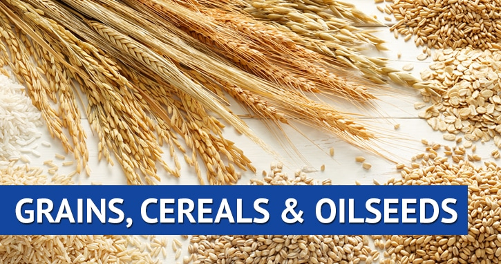 Grains, Cereals, and Oilseeds