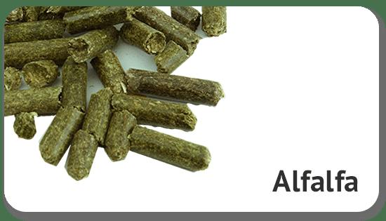 alfalfa-product
