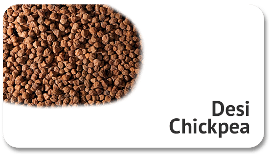 desi-chickpea-global-sourcing-product