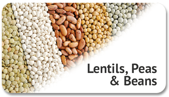 lentils-peas-beans-global-trading