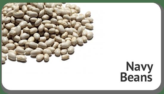 navy-beans-global-sourcing-procurement