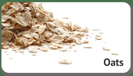 oats-global-sourcing-international-trade