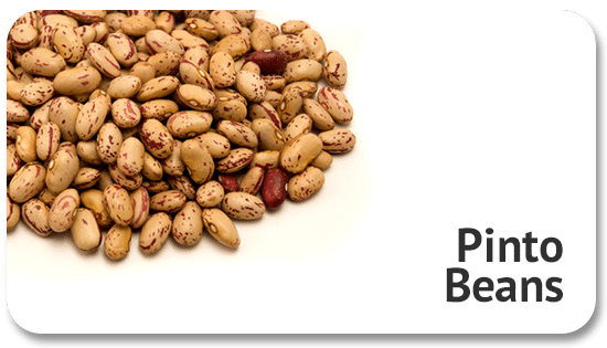 pinto-beans-global-sourcing-commodity