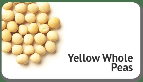 yellow-whole-peas-international-trade-sourcing