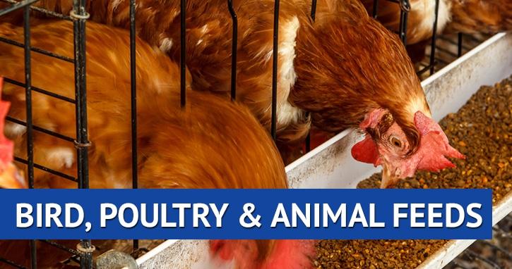 Bird and Animal Feed