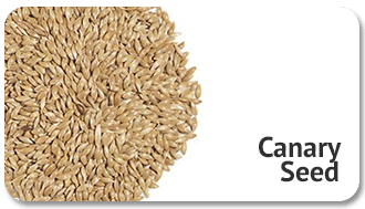 canary-seed-img