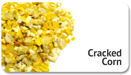 cracked-corn-product