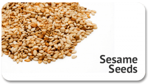 sesame-seeds-products-global-trade-source