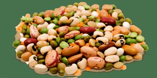 argan-olive-products-main-image